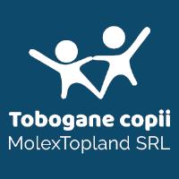 Tobogane